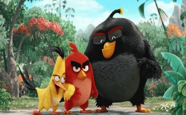 Angry Birds İstanbul KuşAtması